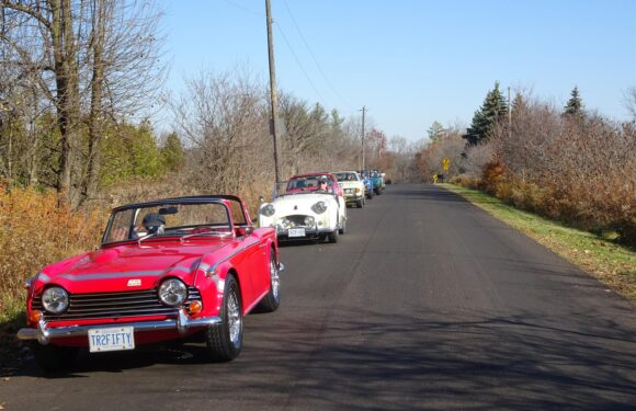 Fall Drive West – Burlington – 8 Nov 2020